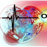 heart-665177_640